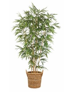 9' Bamboo Tree in Round Core Rattan Basket with Handles