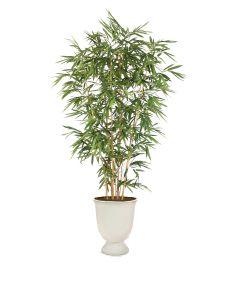 9' Bamboo Tree in White Concrete-Lite Urn