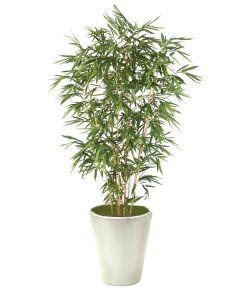 9' Bamboo Tree in Glazed White Stoneware Planter