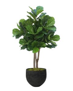 4.5' Fiddle Leaf Tree in Black Orb Stone Planter