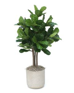 4.5' Fiddle Leaf Tree in Grey Pot