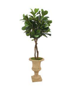 6' Fiddle Leaf Tree in Tan Fiberglass Classic Urn