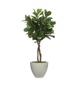 6' Fiddle Leaf Tree in Vertically Ridge Light Grey