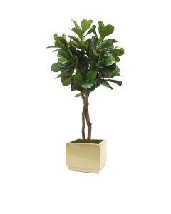 6' Fiddle Leaf Tree in Square Glazed Ivory Stoneware Planter