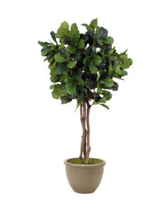 7' Fiddle Leaf Tree in Brown Stoneware Planter