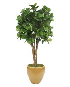 8' Fiddle Leaf Tree Glazed Dark Sand Stoneware Planter