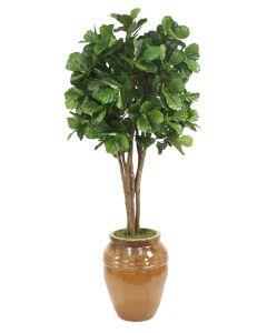 8' Fiddle Leaf Fig Tree in Large Glazed Mocha Egg Pot