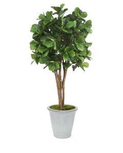 8' Fiddle Leaf Tree in White Stoneware Container