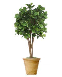 8' Fiddle Leaf Tree Sierra Beige Earthenware  Planter