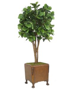 8' Fiddle Leaf Tree in Brown Faux Leather Finish Chateau Planter with Claw Feet