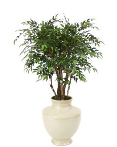 4' Ruscus Tree in Shellish Sand Earthenware Vase