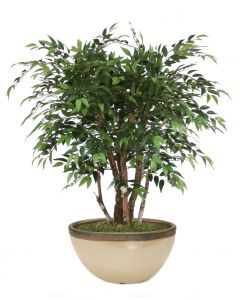 4'  Ruscus Glazed Sand and Bronze Oval Earthenware Planter