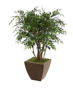 4' Ruscus Tree in Square Bronze Metal Contempo Planter