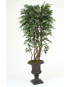 6' Ruscus Tree in Rust Fiberglas Classic Urn