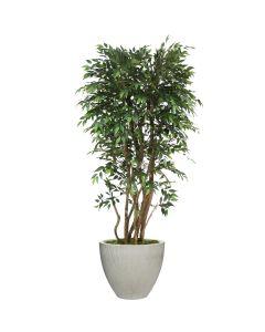 "6"" Ruscus Tree in Vertical Ridge Light Grey"