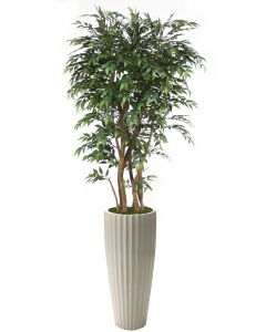 6' Ruscus Tree in Glazed White Earthenware Highland Floor Vase