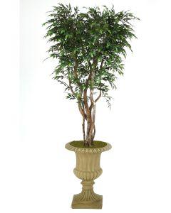 7' Ruscus Tree in Tan Resin Classic Urn