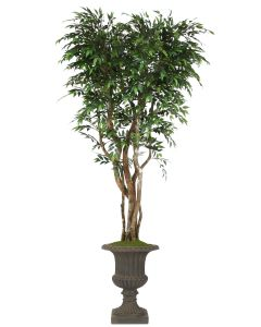 8' Ruscus Tree On Gnarly Trunks in Rust Fiberglas Classic Urn