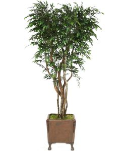 8' Ruscus Tree in Brown Faux Leather Finish Chateau Planter with Claw Feet