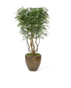 9' Ruscus Tree in Metallic Bronze Stoneware Planter