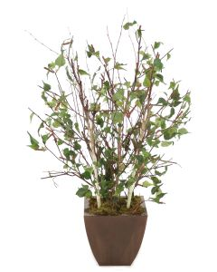 4 Birch Tree in Square Bronze Metal Contempo Planter
