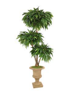 6' Layered Mango Tree in Tan Resin Classic Urn