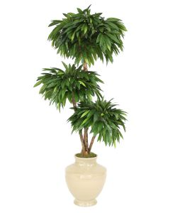 6' Layered Mango Tree in Shellish Sand Earthenware Vase