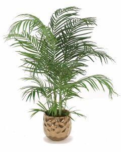 4' Areca Palm in Large Burnt Gold Gabi Planter