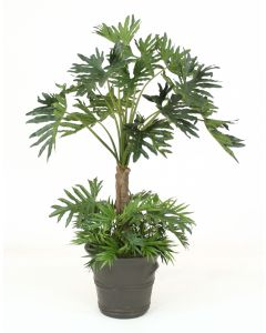 6' Selloum Philodendron with Ground Cover in Large Gray Terra Cotta Garden Planter