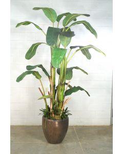 9' Banana Tree In Bronze Stoneware Pot
