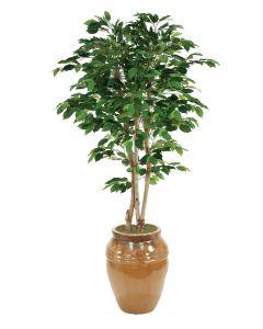7' Deluxe Ficus Tree in Mocha Stoneware Water Jar