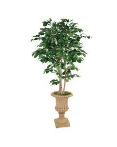 6' Deluxe Ficus in Tan Classic Urn