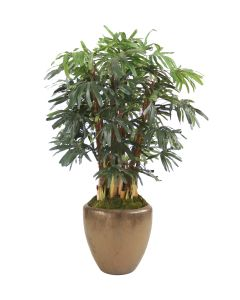 6' Rhapsis Palm Tree in Round Bronze Earthenware Tree Planter