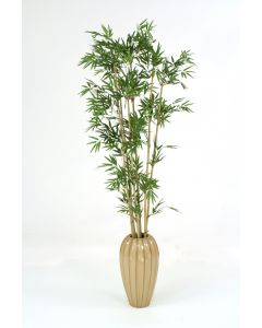 5.5' Bamboo in Tall Milu Earthenware Vase