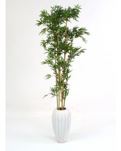 Bamboo in Tall White Earthenware Vase