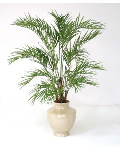 6.5' Areca Palm Tree in Shellish Sand Planter