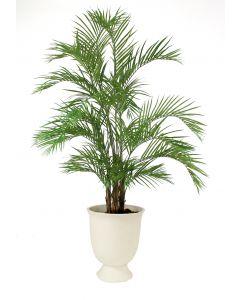 9' Areca Palm in White Concrete Container