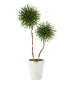 8' Natural Blade Pom Pom Tree in Glazed White Stoneware Planter