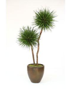 8' Grass Pom Pom Tree in Metallic Bronze Stoneware Pot