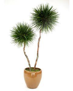 8' Grass Pom Pom Tree X 2 in Mocha Glazed Stoneware Pot