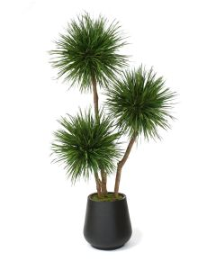 8' Natural Blade Pom Pom in Black Fiberstone Planter