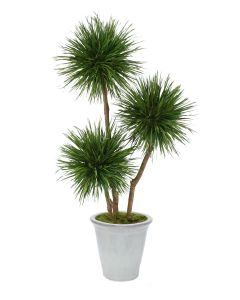 8'Natural Blade Pom Pom Tree in White Stoneware Container