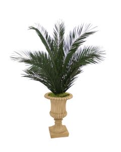 6' Phoenix Palm Tree in Tan Resin Classic Urn