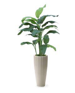 6.5' Banana Tree in Glazed White Earthenware Highland Floor Vase
