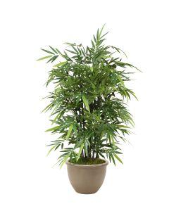 5' Black Bamboo Tree in Brown Stoneware Pot