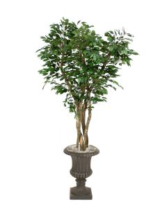 7' Canopy Ficus in Rust Finish Resin Classic Urn