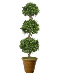 Boxwood 3 Ball Topiary in Tuscan Brown Terracotta Patio Pot