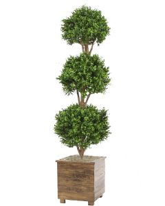 Boxwood 3 Ball Topiary in Square Stained Wood Planter with Feet