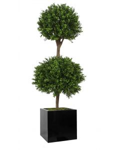 2 Ball Boxwood Topiary in Block Planter