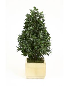 4.5' Laurel Pear-Shaped Topiary in Ivory Glazed Stoneware Cube